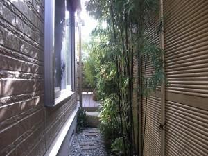 ⑤建物横の園路は和風に