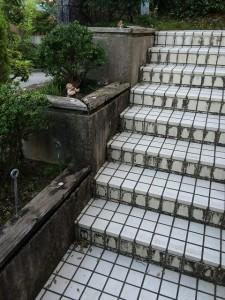 アプローチ階段(before)